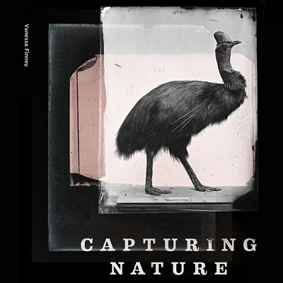 Coffee Table: Capturing Nature